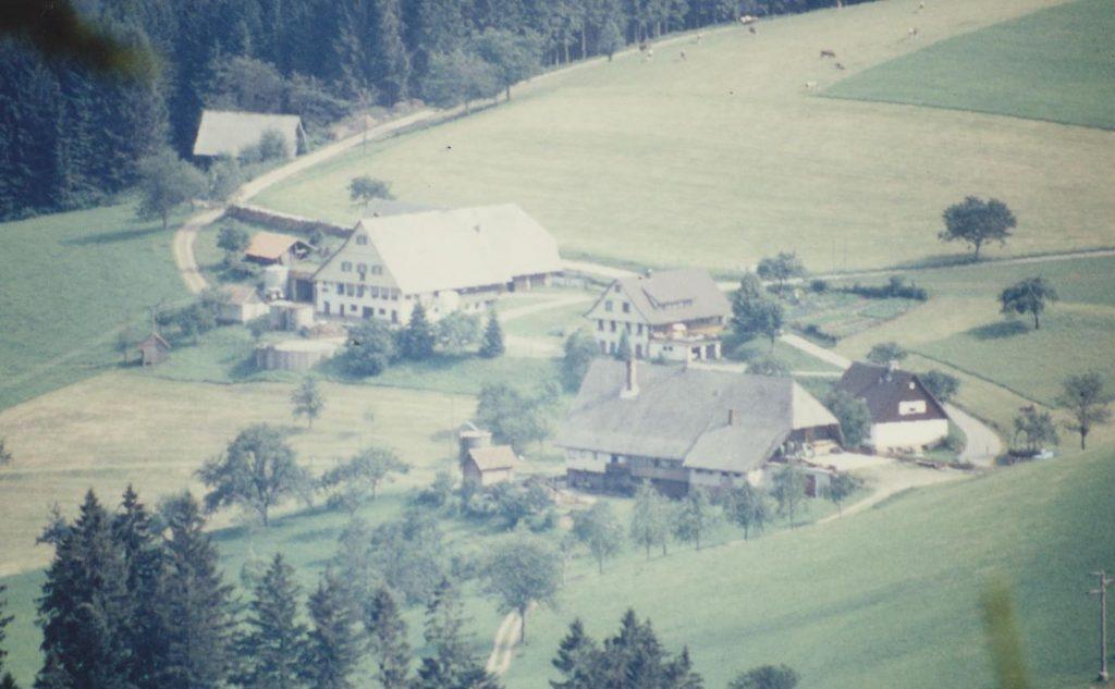 Alexenhof im Juli 1990